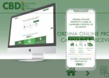 CBD: Cannabis Buy Delivery